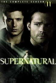 Supernatural - Season 8 Season 11