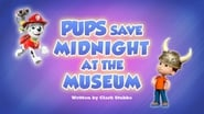 Pups Save Midnight at the Museum