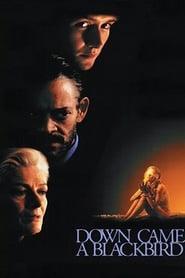 Down Came a Blackbird (1995)