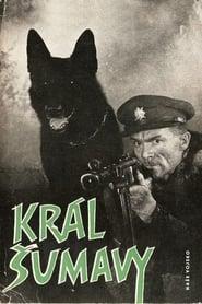 Král Šumavy affisch