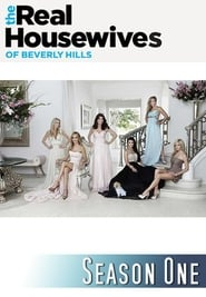 The Real Housewives of Beverly Hills staffel 1 stream