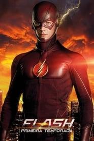 The Flash - Season 1