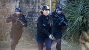 NCIS: New Orleans saison 2 episode 16
