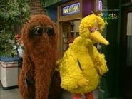 Big Bird, Snuffy and Friends Hike