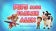 Pups Save Farmer Alex