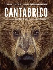 Película Cantábrico / Los dominios del oso pardo