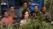 Weeds Season 2 Episode 8 : MILF Money