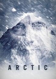 Ver Arctic Online HD Español (2017)