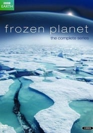Frozen Planet streaming vf poster