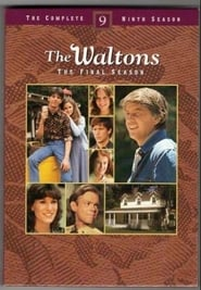 Streaming The Waltons poster