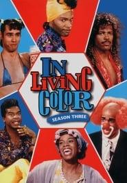 In Living Color Season 3