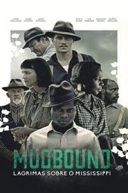 Mudbound: Lágrimas Sobre o Mississippi Dublado HD 720p
