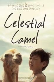 Celestial Camel