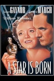 Topper (1937) Assistir Online