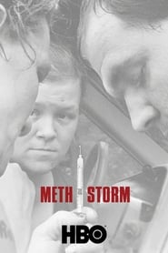 Tempestade de Metanfetamina Legendado HD 720p