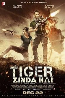 Tiger Zinda Hai (2017)