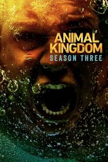 Gyvulių karalystė 3 Sezonas