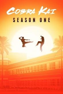 Kobra Kai 1 Sezonas