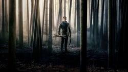 Vision de Robin Hood pelicula online
