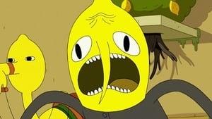 Adventure Time saison 4 episode 20