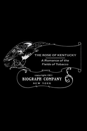 The Rose of Kentucky
