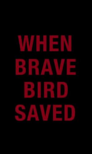 When Brave Bird Saved