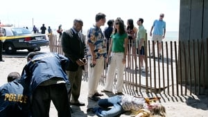 NCIS Season 5 :Episode 19  Judgment Day (2)