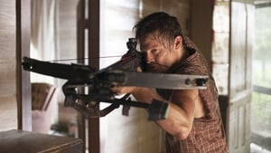 The Walking Dead 2X4 Online Subtitulado