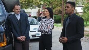 Elementary Season 6 :Episode 9  Uomini e cavie
