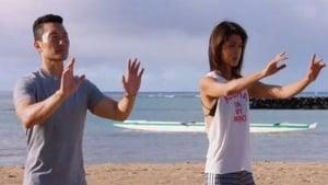 Hawaii 5-0 saison 7 episode 3