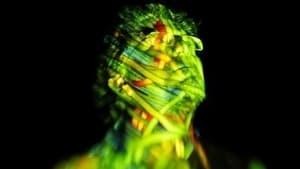 The Creative Brain: How Insight Works