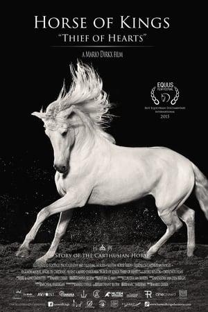 Le cheval andalou