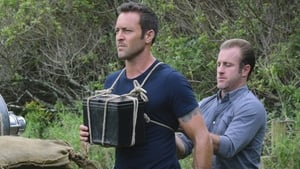 Hawaii Five-0 Season 7 :Episode 18  E malama pono (Handle with Care)