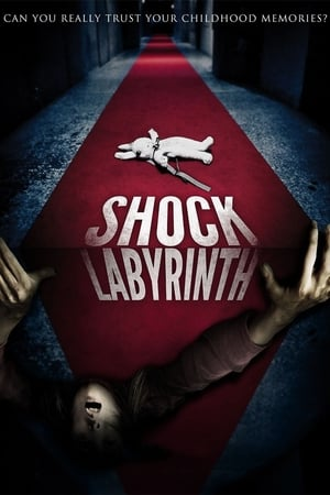 The Shock Labyrinth