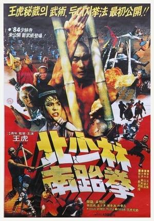 South Shaolin vs. North Shaolin (1984)
