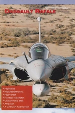 Combat in the Air - Dassault Rafale