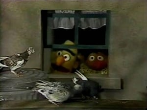 Sesame Street Season 20 :Episode 9  Episode 578