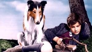 Capture of La fidèle Lassie