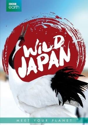 Japan: Earth's Enchanted Islands