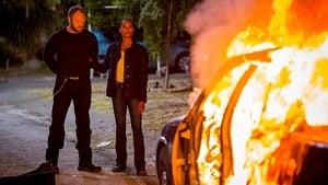 Major Crimes season 4
