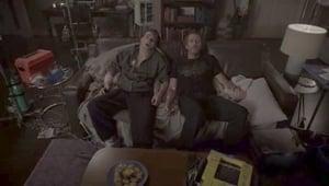 Season 8 - Temporada 8