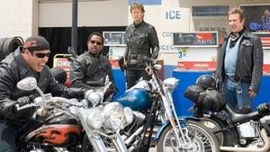 Motoqueiros Selvagens