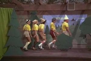 Snow White and the Seven Bradys