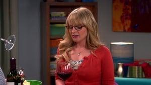The Big Bang Theory Season 6 Episode 19