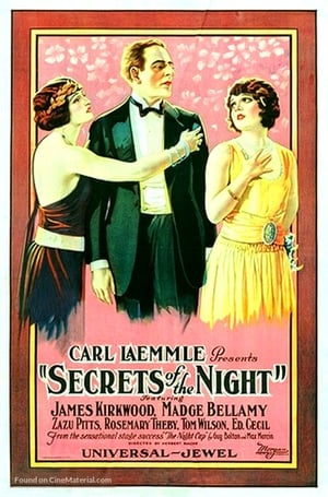 Secrets of the Night (1924)