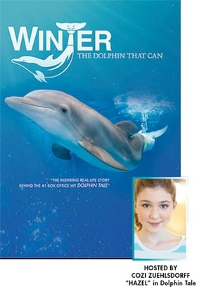Winter, the Dolphin that Can