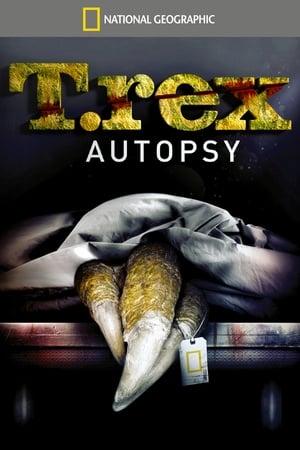Autopsie d'un T-Rex