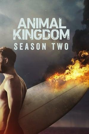 Regarder Animal Kingdom Saison 2 Streaming