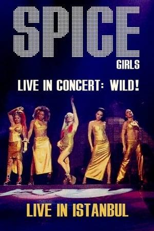Spice Girls In Concert Wild!