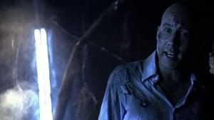 Assistir Smallville: As Aventuras do Superboy 6a Temporada Episodio 19 Dublado Legendado 6×19